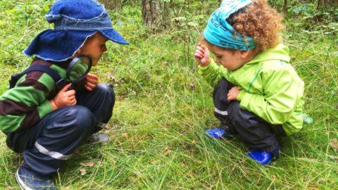 Wakacyjny pobyt w leśnym przedszkolu montessori :-)