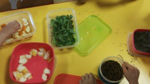 Smyko-Multisensoryka® w szkole :-)